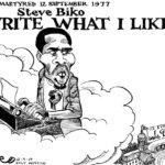 Biko, 40 years on