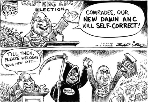 Zapiro: Self-correction Election