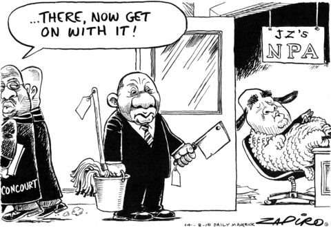 Zapiro: Chop and mop