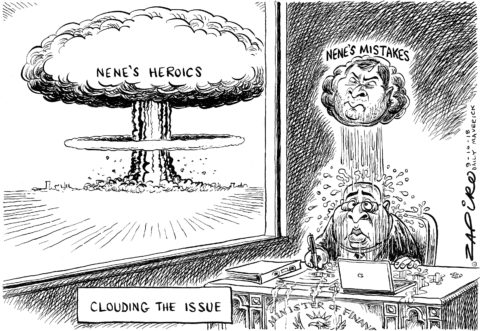 Zapiro: Viewing Nene