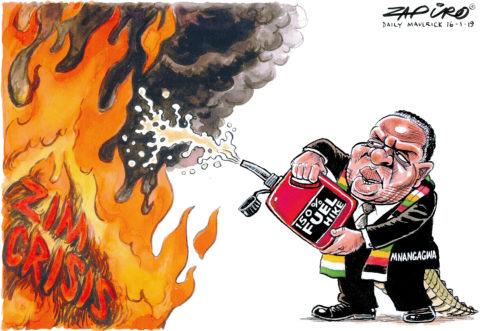 Zapiro: Zim Crisis