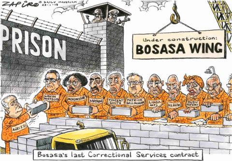 Zapiro: Bosasa