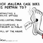 Malema Case