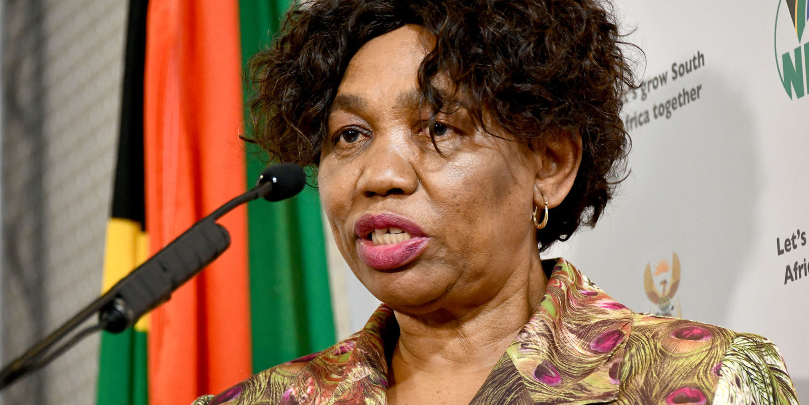 Motshekga: Postponing Academic Year Over COVID-19 Would Have Catastrophic Consequences