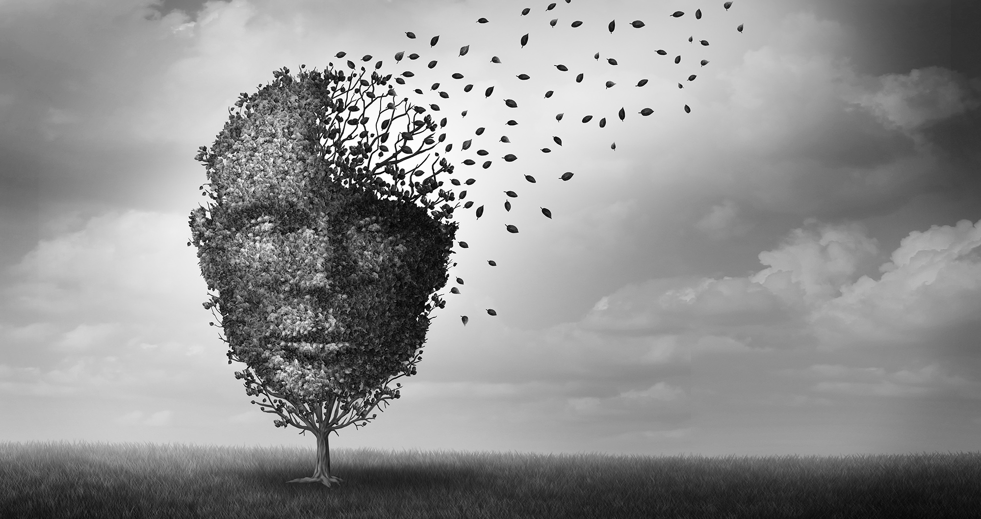 BUSINESS MAVERICK OP-ED: Dementia: Heartbreaking, sad… and also a major financial problem