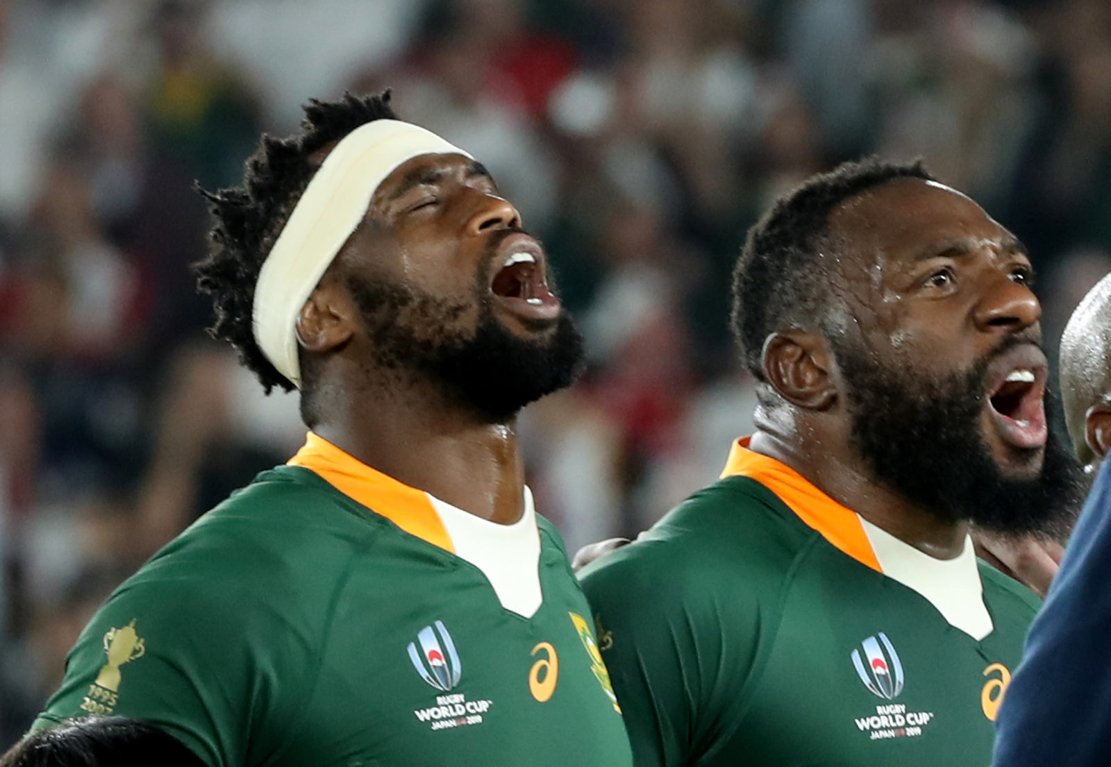 South Africa expected to withdraw from this year's Rugby Championship