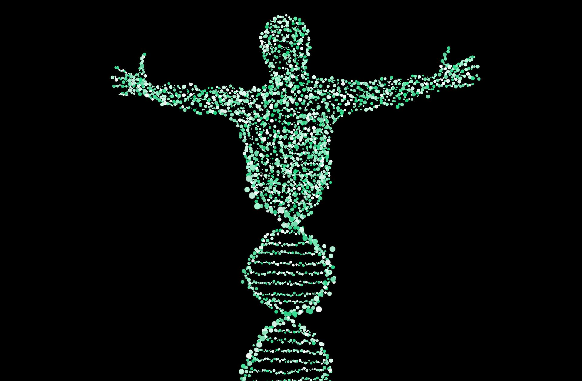 Maverick Life: The Gene Genie: Family tree and genetic data privacy