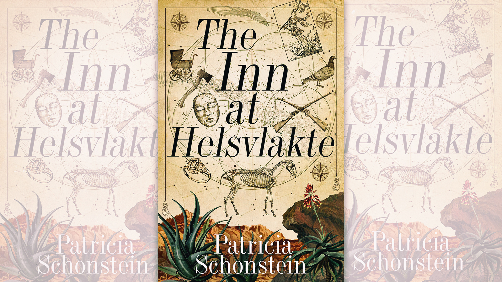 BOOK REVIEW: The Inn at Helsvlakte by Patricia Schonstein: A novel of darkness and redemption