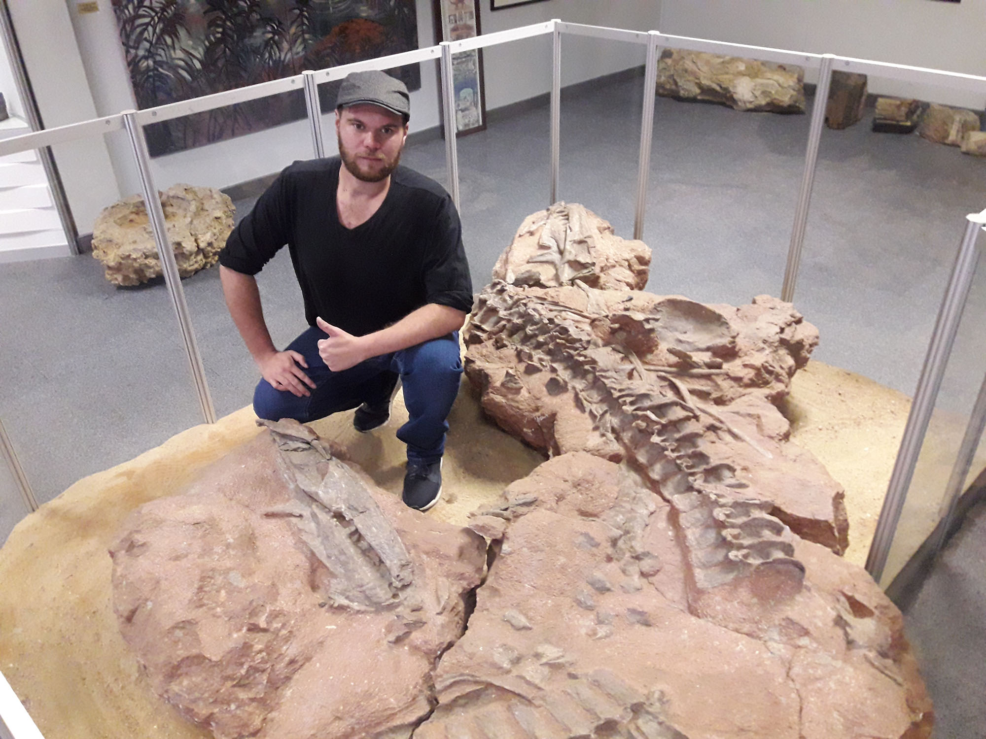 New finding: SA dinosaurs were preyed on by giant crocodile ancestors