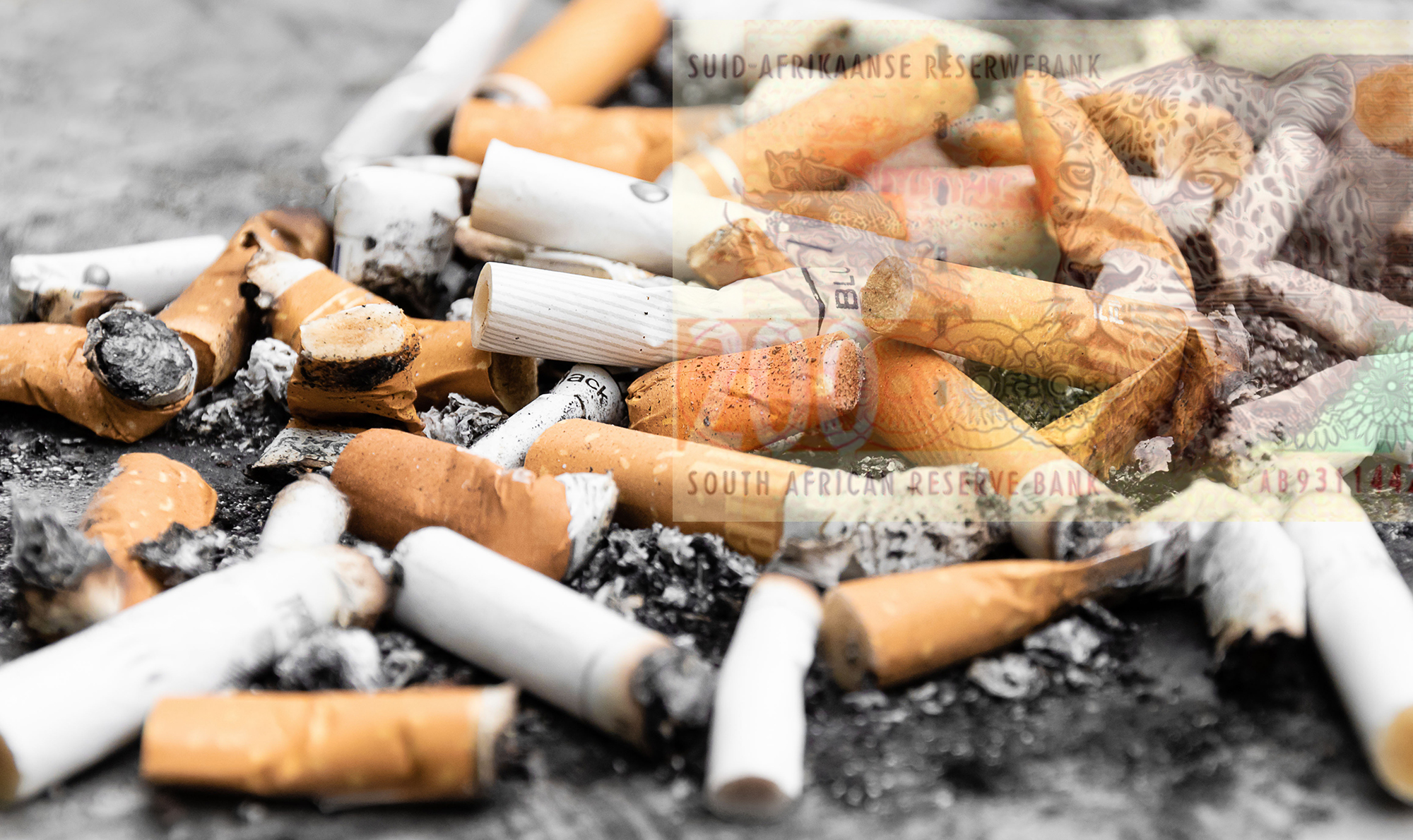 Brazen assassination attempt as SA tobacco war gets deadlier