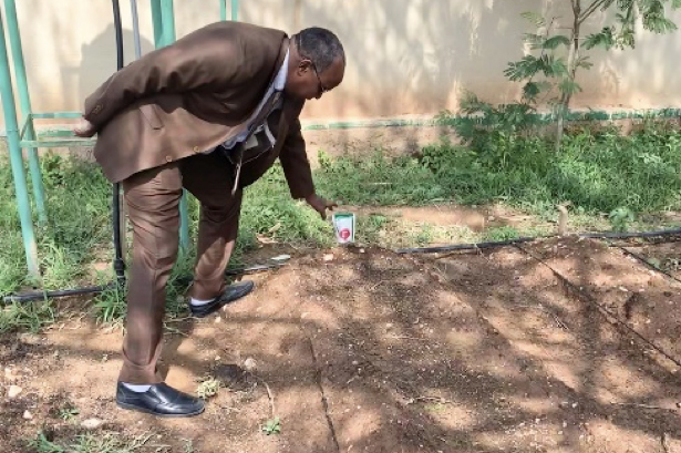 Somaliland's director-general of agriculture, Dr Ahmed Ali Mah, at an experiment with irrigation at the department in Hargeisa. Picture: Ray Hartley