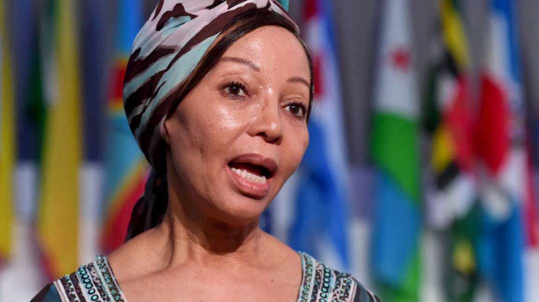 Bridgette Radebe hits back at claims of meddling and money laundering, but questions remain