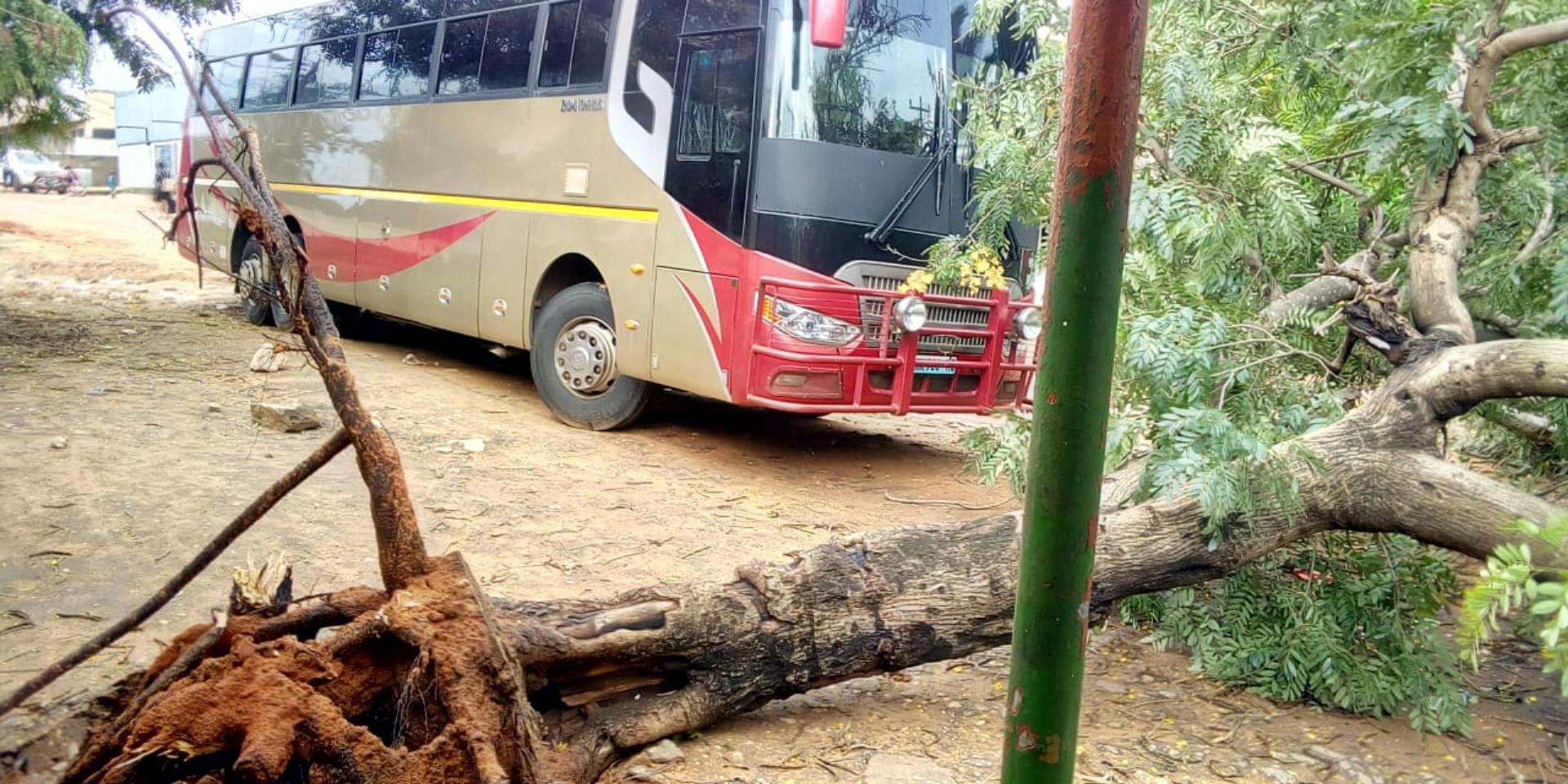 Newsdeck: Cyclone Death Toll Climbs; Comoros Struggles to Restore Power
