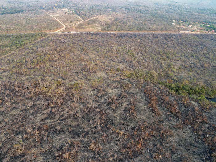 As Fires Rage in Amazon, Brazil Pushes Back Against Global Scorn