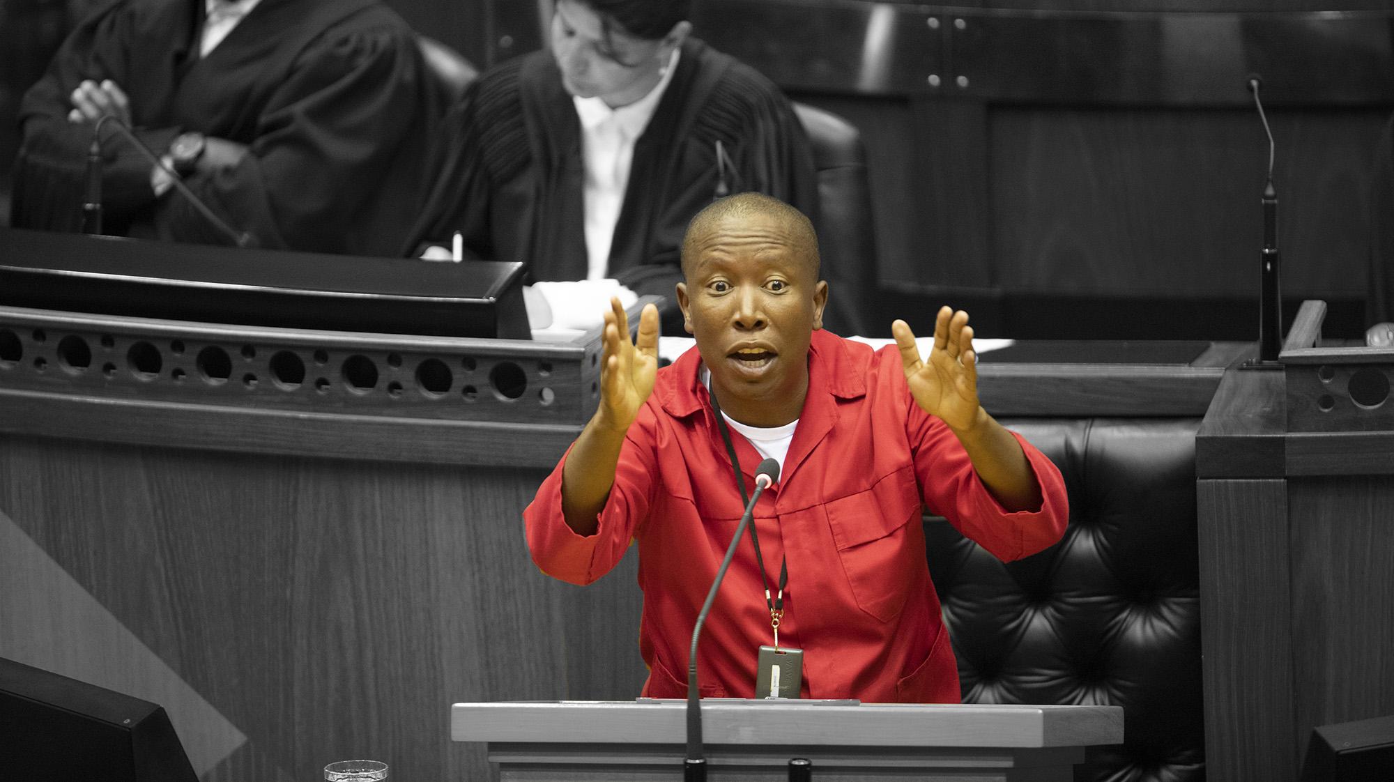Advokate se liggaam slaan Julius Malema van die EFF weens sy 'aanval' op SA se beoordelaars - Daily Maverick