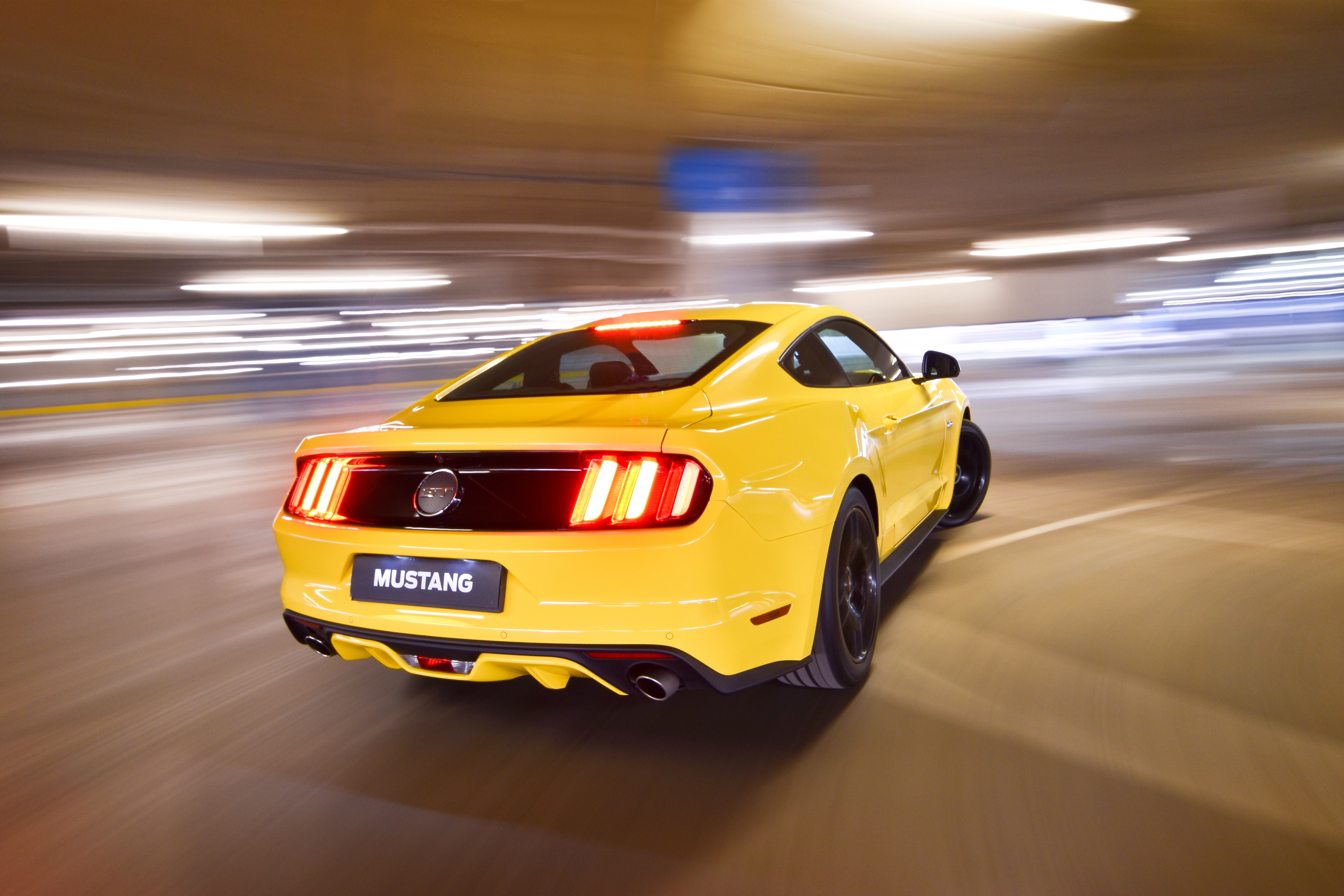 Ford Mustang 5 0 V8 Fastback: Galloping racehorse – o