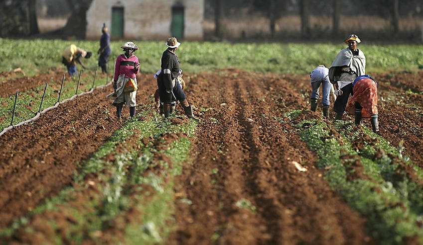 Op-Ed: What's wrong with our land reform programme – will a commission really help?